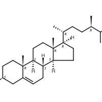 菜油甾醇 CAS:474-62-4