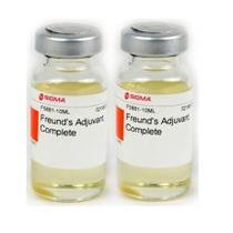 过硫酸铵/高硫酸铵/过二硫酸铵/过氧化硫酸铵/过氧二硫酸铵/APS/PER