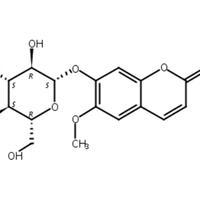 东莨菪苷 CAS:531-44-2
