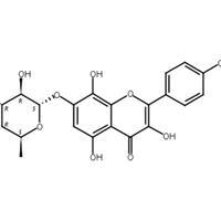 草質素苷,CAS:85571-15-9