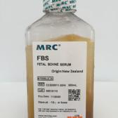MRC新西兰胎牛血清,灭活Fetal Bovine Serum