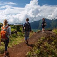 宁海登山健步道2日团建旅行!团队户外体验毅力行训练,沐浴山林的新鲜空气