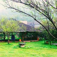 無錫龍頭渚2日團建,山青水秀,仿佛一幅天然的江南山水畫