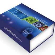 人蛋白激酶C受体1(RACK1)ELISA试剂盒