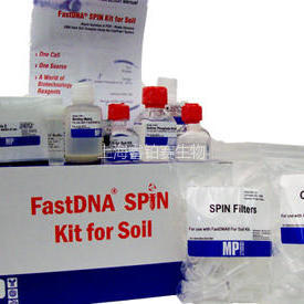 土壤DNA提取试剂盒 FastDNA™ SPIN Kit for Soil