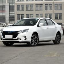 2016款 EV300 尊贵型
