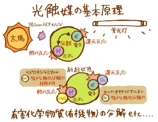 光触媒原理_看图王.jpg