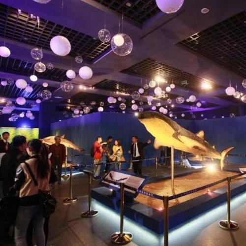 海洋生物展覽