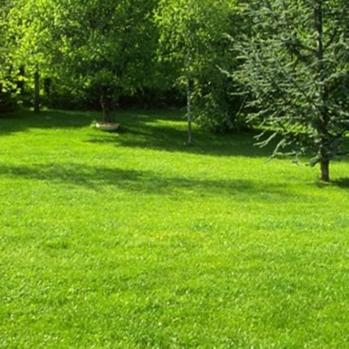 園林綠地養護