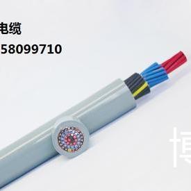 TOP100-拖链电缆