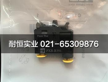 PXB-B3911-1.jpg