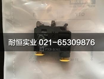 PXB-B3921-1.jpg