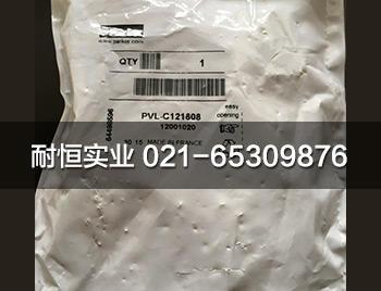 PVL-C121608.jpg