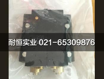PS1-E102-1.jpg