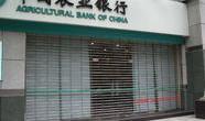 农业银行卷帘门案例