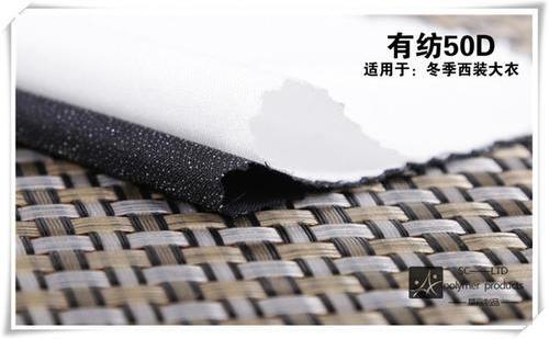 涤纶50D 75D有纺衬布