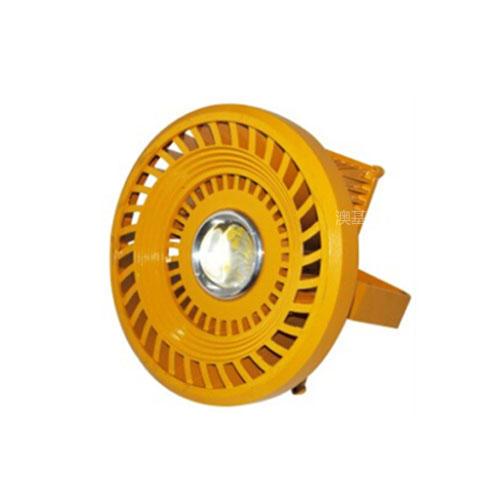 30w-100w 圆形防爆灯
