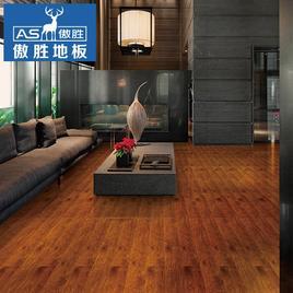 梦幻之旅 ASL4004