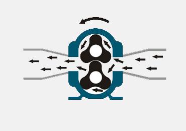 青岛罗德凸轮泵工作原理