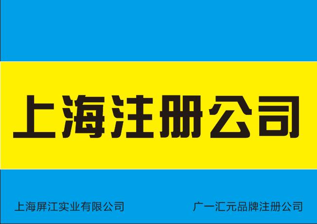 注册公司材料解析.doc
