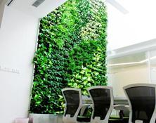 垂直綠化墻