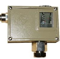 D504/7D防爆压力控制器