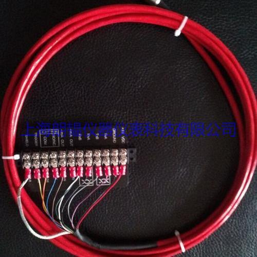 雷泰(Raytek) XXX2CCB4/8/15/30/60 高温电缆