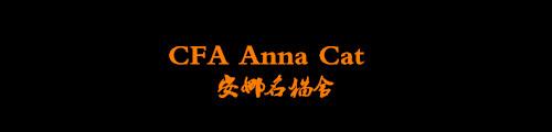 安娜名猫舍