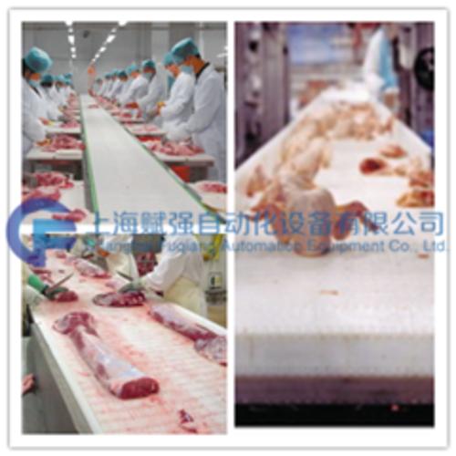 肉类水产品行业输送机