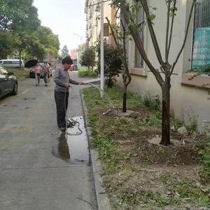 闵行區景洪路紅富士廠區綠化施工