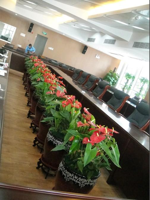 会议室案例.jpg