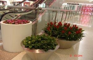 组合花卉1.jpg