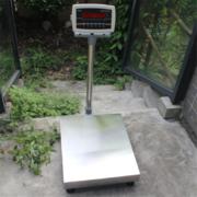 上海朗科30kg电子台秤,30kg/1g电子台秤,电子台秤