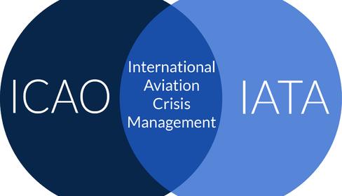 ICAO & IATA seek more common sense in cabin laptop bans