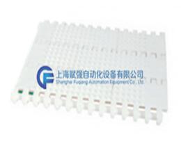 800微突型网带.png