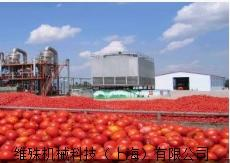 番茄酱生产线.png