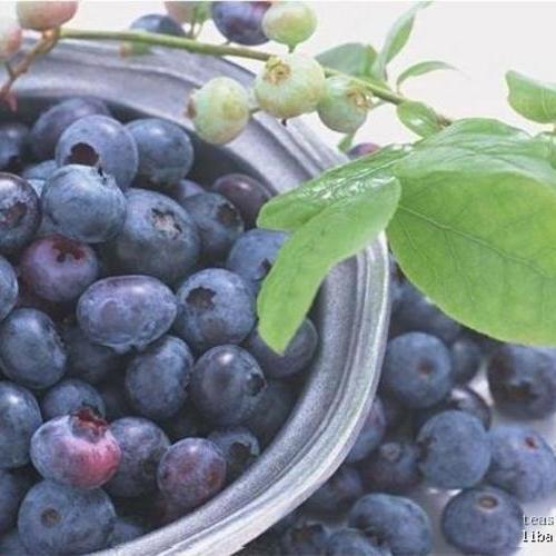 蓝莓 /盒