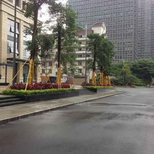 泛海城市广场园林工程