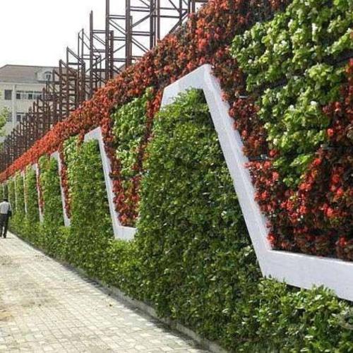 室外绿化设计