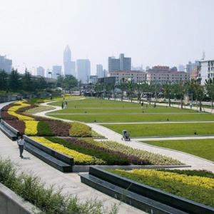 街心绿地养护工程