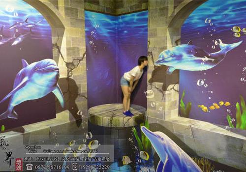 3D错觉海洋馆