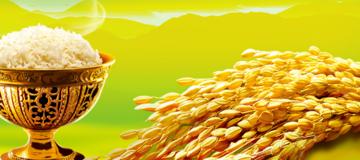 大米储存方法
