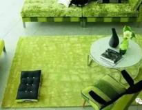 家庭保洁清洗地毯的方法