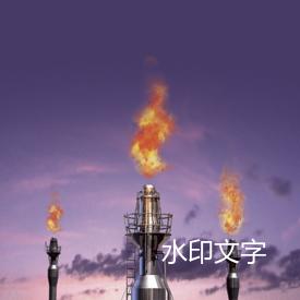 气体燃烧火炬装置