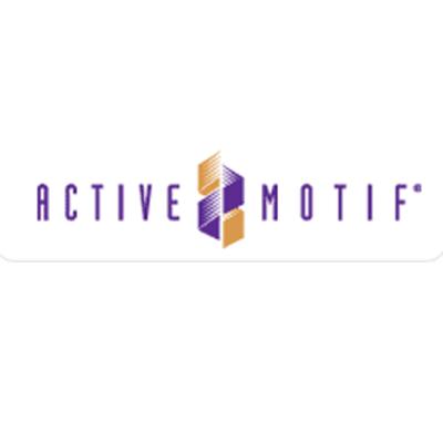Active Motif 新.png