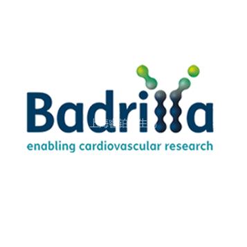 Badrilla