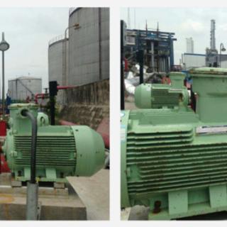 XZB双螺旋转子泵(沥青输送泵)