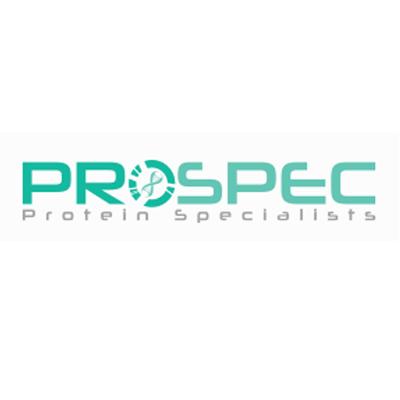Prospec 新.png