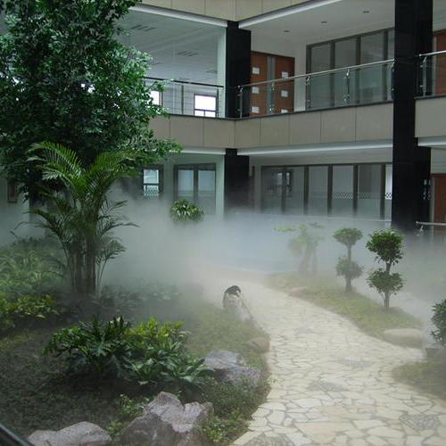黄浦湾冷雾