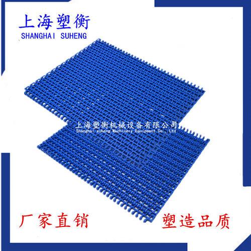 1100平格塑料网带